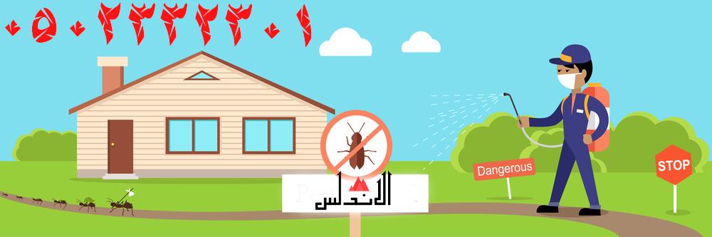 شركة مكافحة حشرات بالرياض الافضل والاقوي